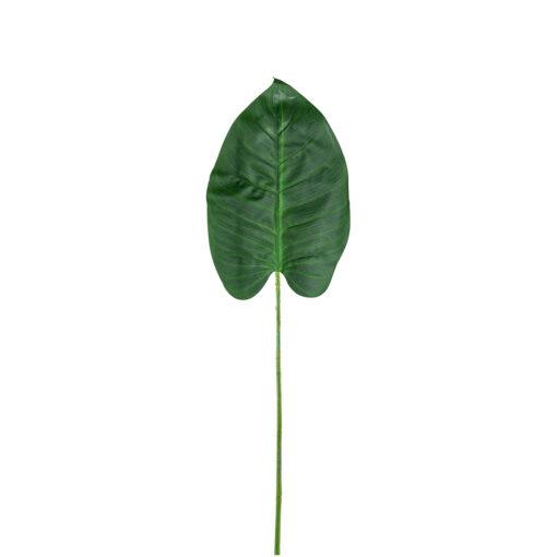 -FL-0022 - Philo Leaf (24 pieces)