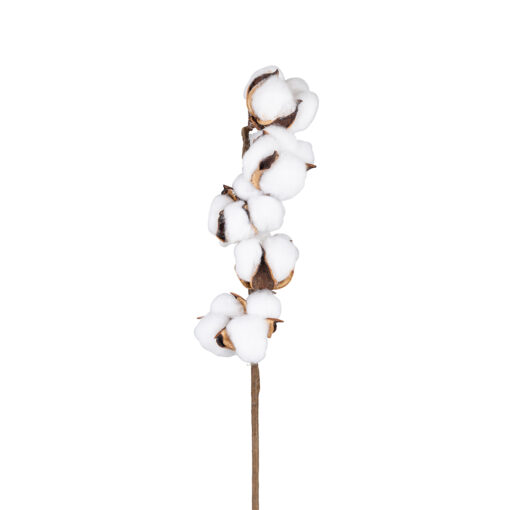 -FL-0023 - Cotton spray (24 pieces)