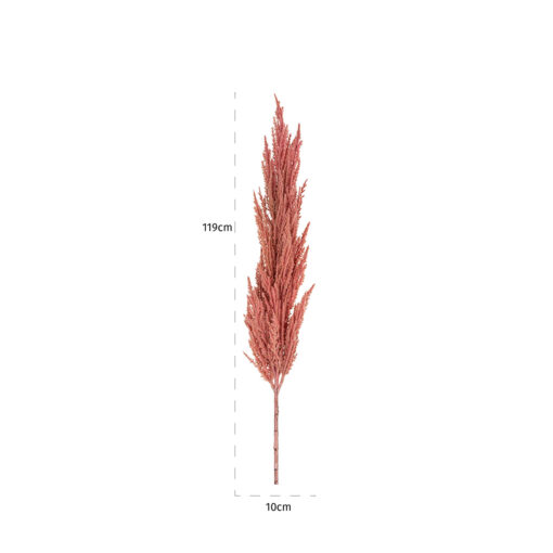 -FL-0029 - Frond pampas pink big (6 pieces)